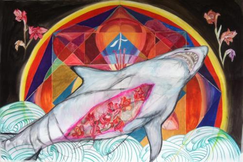 requin-mandala
