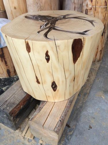 buche bois pin chevreuil peint dessin