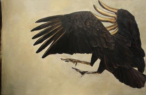 vautour-websize
